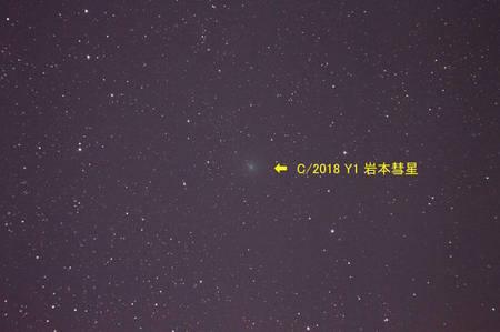 C2018 Y1.jpg